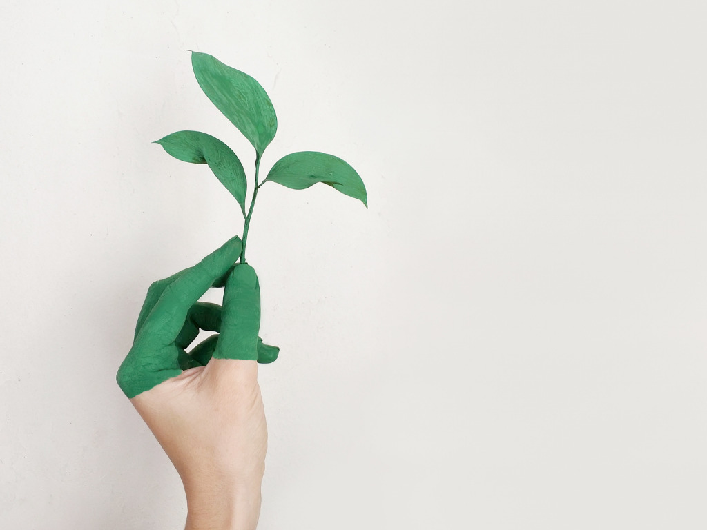 LIST analyses Green bonds and Life Cycle Assessment