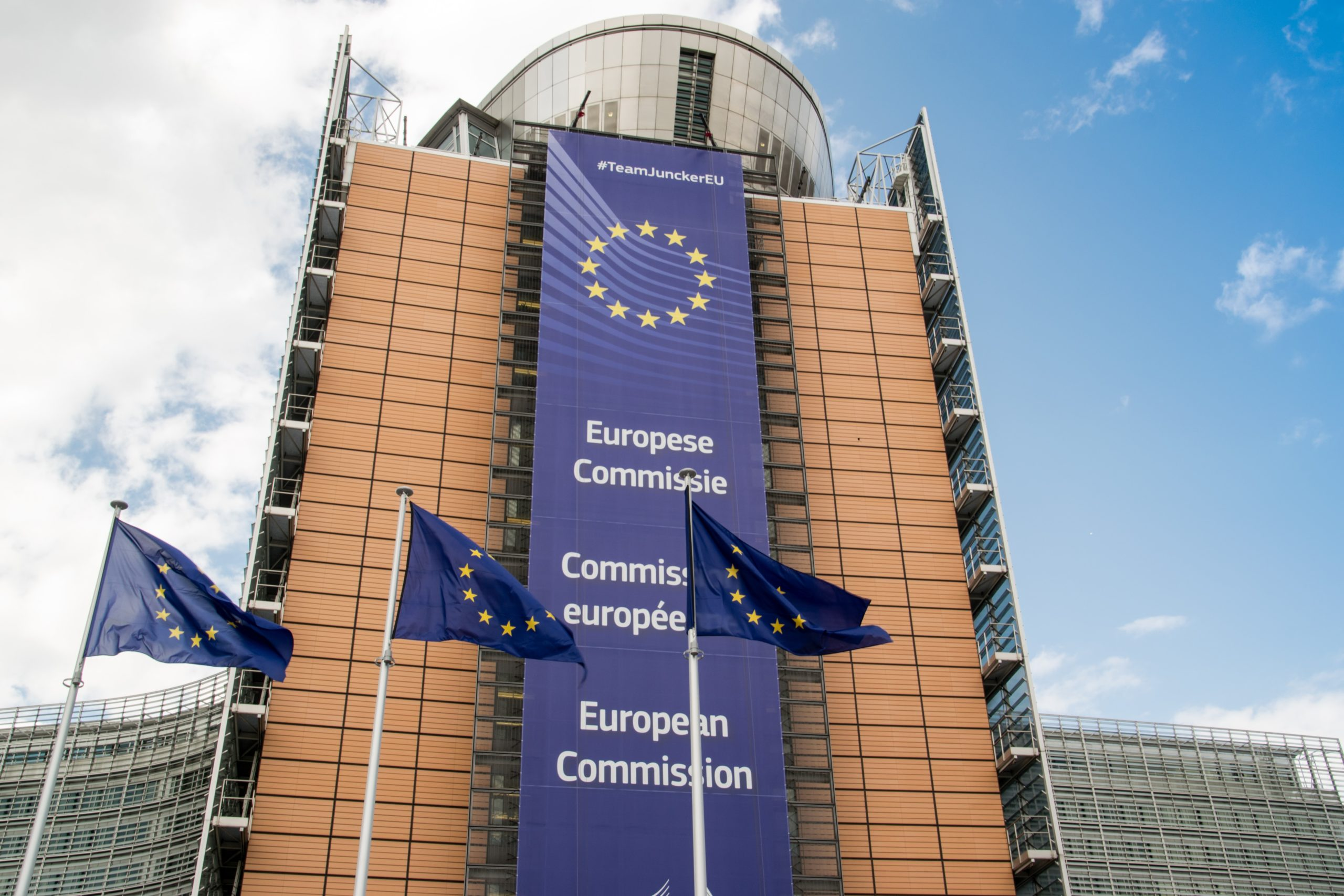 Call for feedback by the EU Platform on Sustainable Finance on the taxonomy